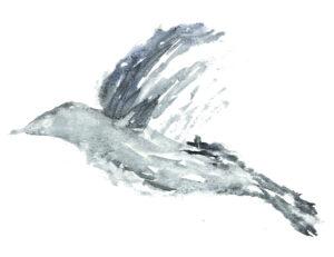 Bird in Flight. Watercolor on watercolor paper. Janice Greenwood.