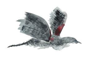 Blackbird. Watercolor on watercolor paper. Janice Greenwood. Original Art.
