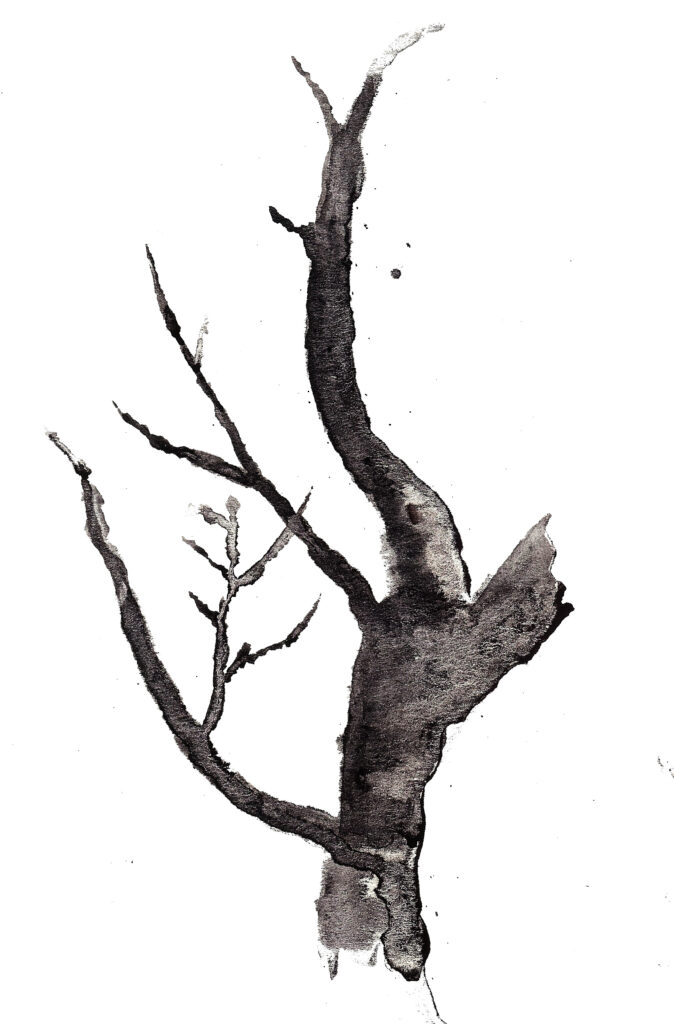 Tree. Watercolor on watercolor paper. Janice Greenwood. Original art.