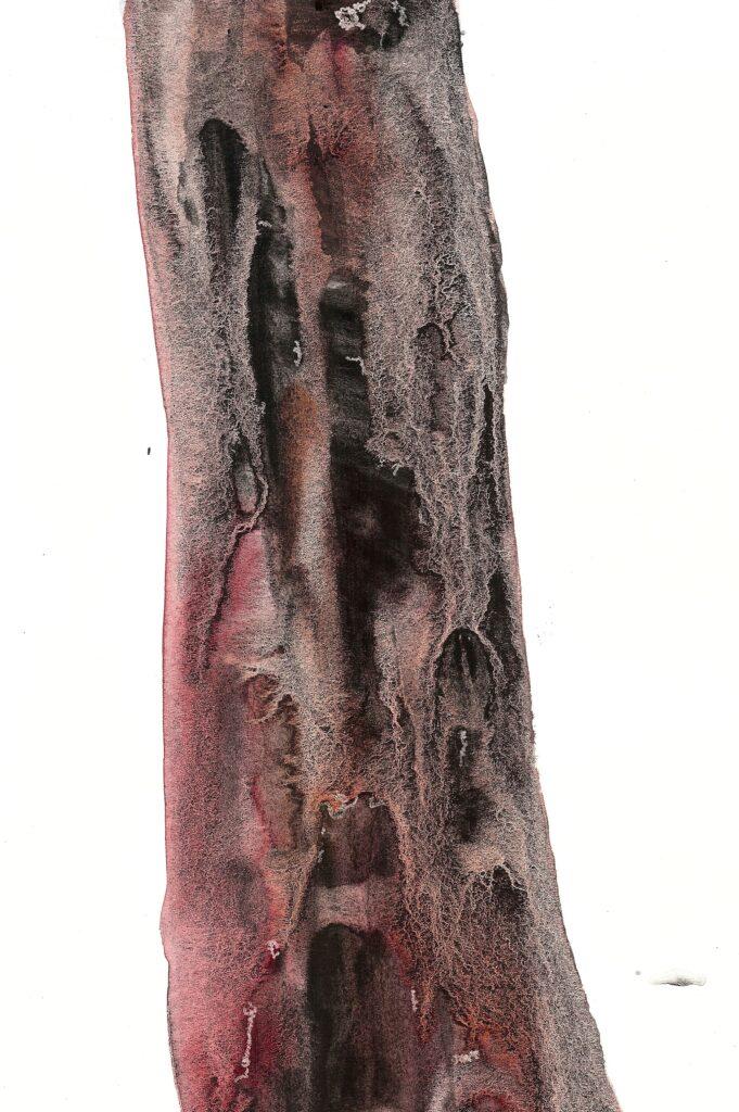 Redwood. Watercolor. Janice Greenwood. Original Art.
