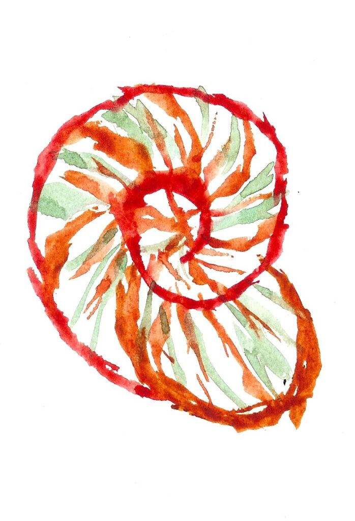 Gastropod. Watercolor. Janice Greenwood. Original Art.