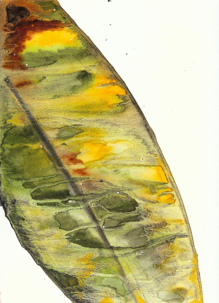 Gold Leaf. Watercolor. Janice Greenwood. Original Art.
