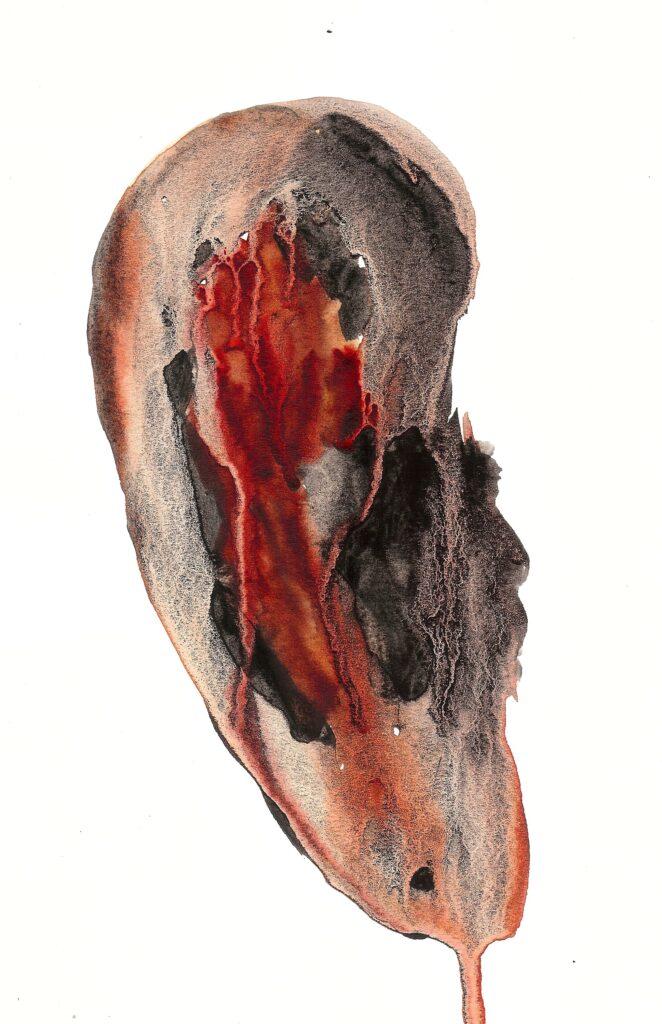 Andy's Ear. Watercolor. Janice Greenwood. Original Art.